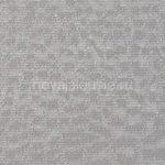 кобра серебро 640x480 1